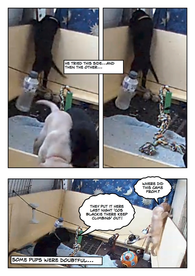Puppyescape_page2
