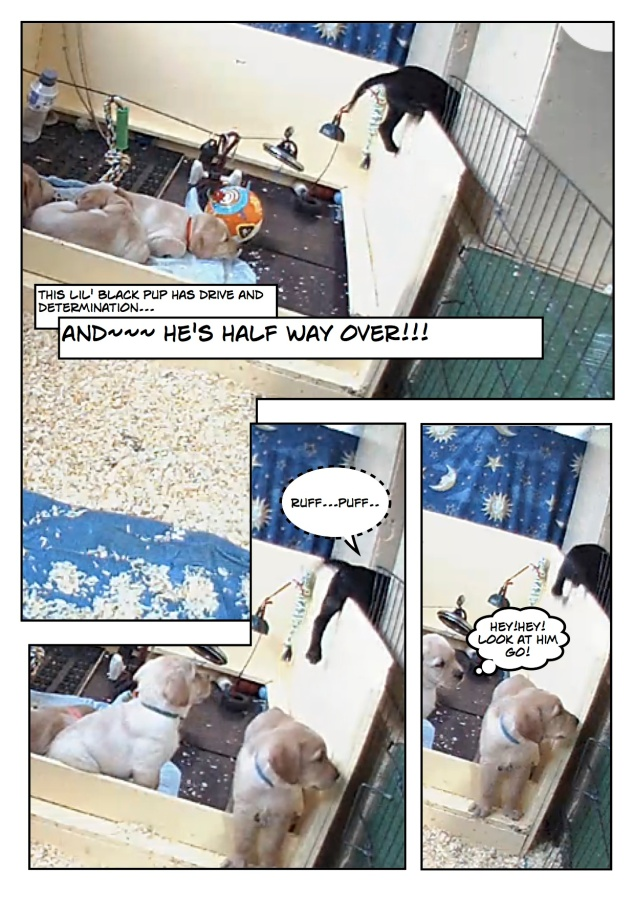 Puppyescape_page4